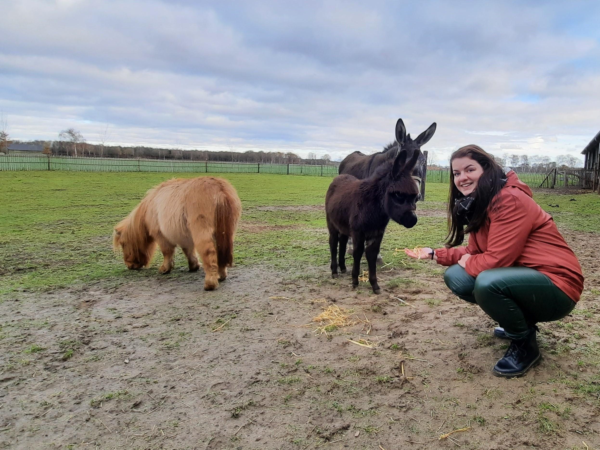 Rola kinderdagverblijf krakenburg boerderij son