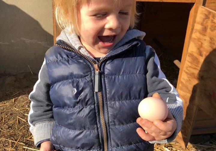 Nieuw Kinderopvang Krakenburg Nuenen